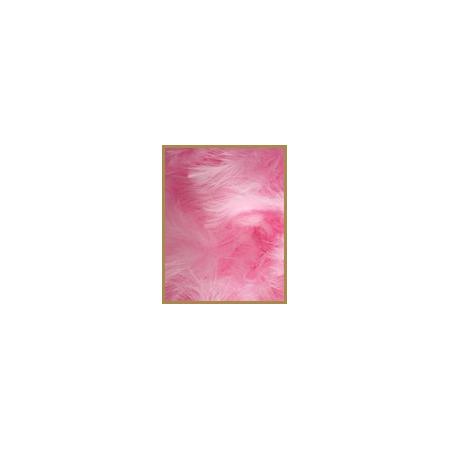 10 gr de plumes ROSES