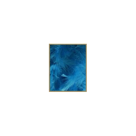 10 gr de plumes TURQUOISE