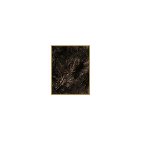 10 gr de plumes NOIRES