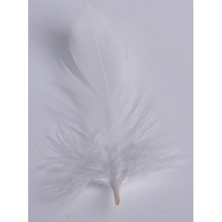 2 gr de mini plumes BLANCHES