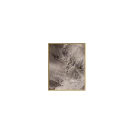 10 gr de plumes GRISES