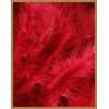 10 gr of RED feathers