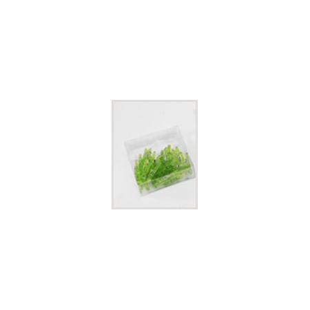 Green plastic clip
