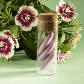 Tube éprouvette avec bouchon en liège, verre,