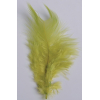 2 gr of small GREEN feathers